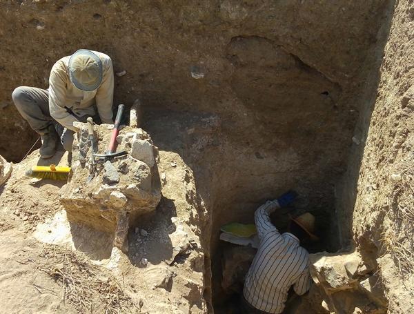 کشف یک بنای باشکوه ساسانی در جنوب غرب مشهد