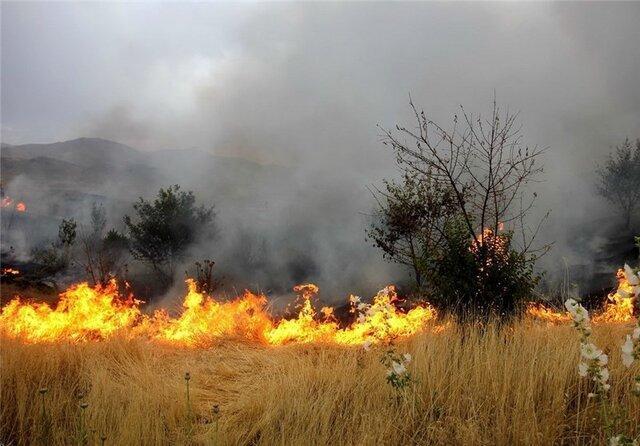 آتش سوزی بعضی مناطق طبیعی کردستان در ساعت 4 بامداد